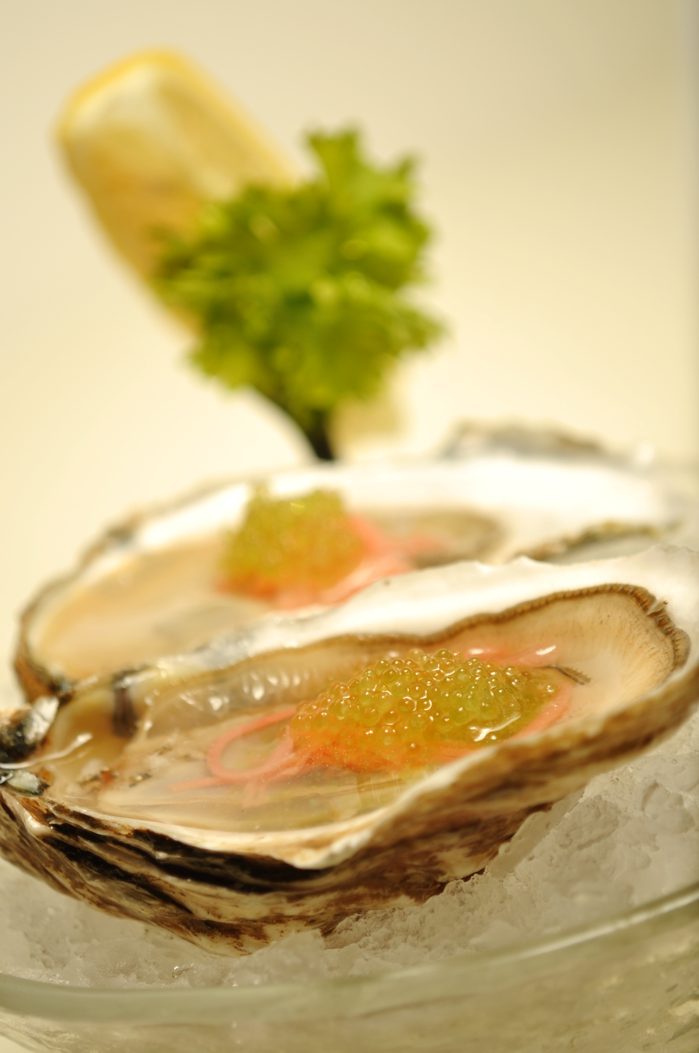 Oysters and caviar at Crab and Fin (Courtesy photo)
